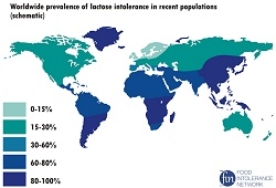 HI-lactoseintolerance