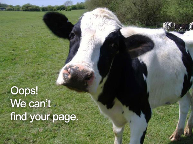 cow-cute-670-404_pageerror