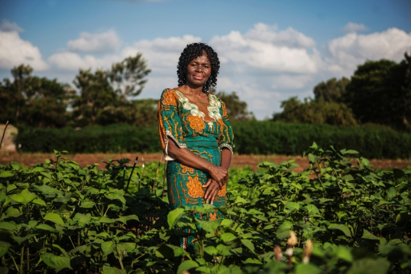 Early in her childhood, Mary Abukutsa-Onyango developed an allergy to dairy, eggs, and certain meats, and a doctor advised her to avoid eating any animal products. Her mother and grandmothers raised her on nourishing meals made from native plants growing around her village. Read more about her work here.